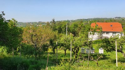 Remetski kamenjak land plot 1100m2 for villa 400m2